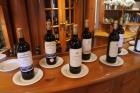 Wine_lineup_2